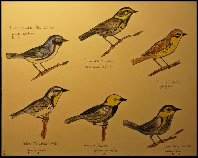 A plate of warblers