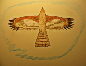 A Red-shoulder Hawk flying above.