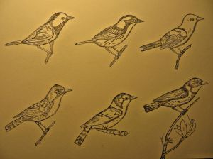 A warbler plate awaiting color.