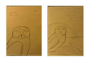 Snowy Owl sketches in a book of paper.