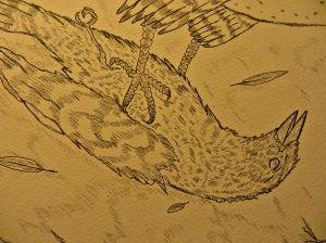closeupdeadbird.jpg