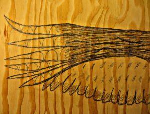 pencilwing.jpg
