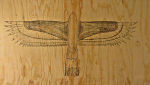 zonetailedhawkpencilplywood.jpg