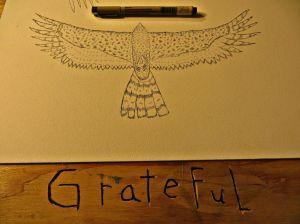 gratefulhawk.jpg