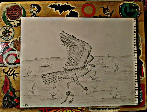 flyingaway.jpg