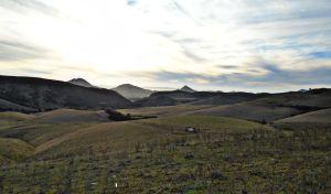 hills1.jpg