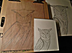 Sketches of Spain...except owls....and I was watching cartoons and I misplaced my Miles Davis CDs.