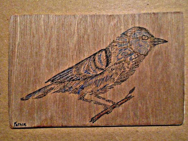 woodenwarbler2.jpg