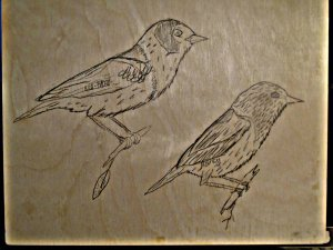 Red-faced and Mourning Warblers.
