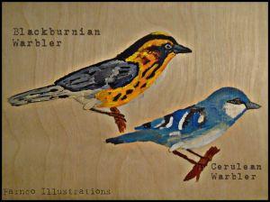 warblerswoodfinal.jpg