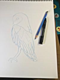 bleowl