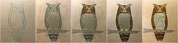 spotted-eagle-owl-process