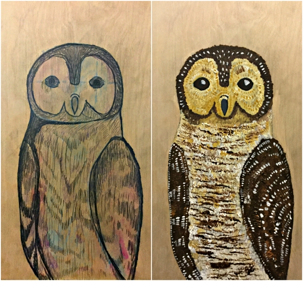 spotted-wood-owl-two