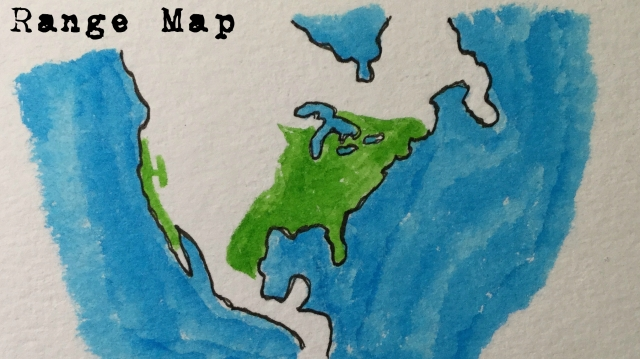 RSHA map
