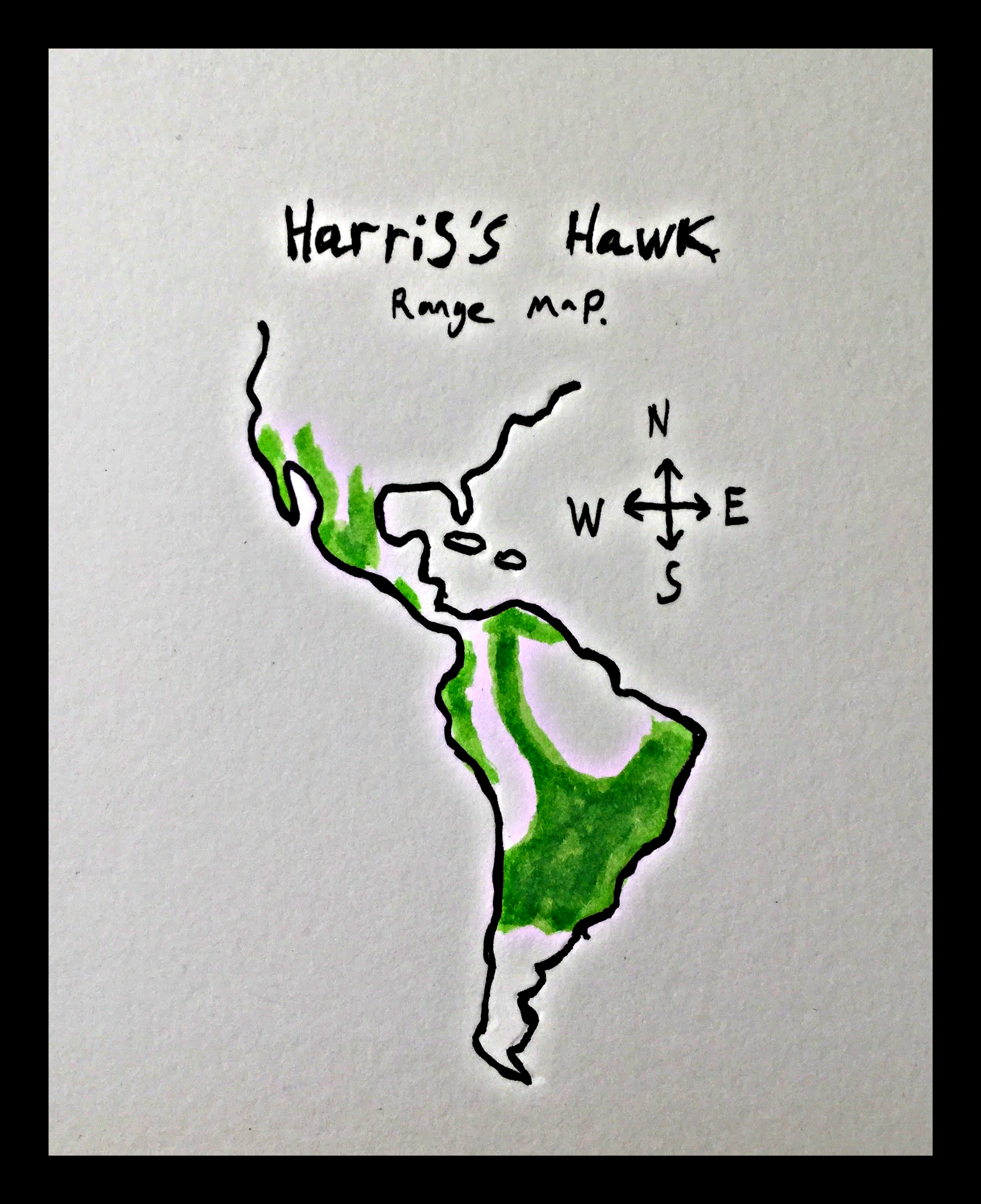 Hariss hawk map