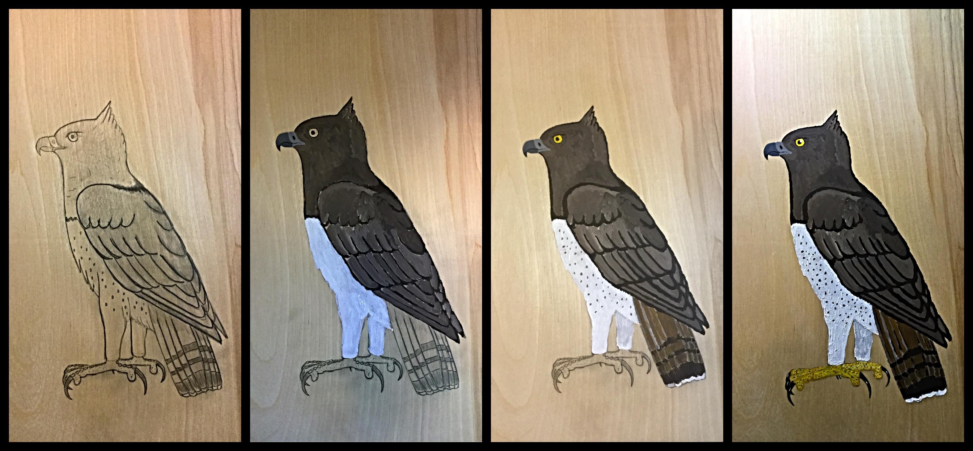 martial eagle progression